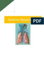 9 ppt s respiratorio