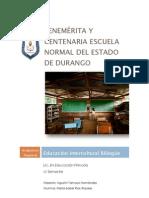 Educación Intercultural Bilingüe ensayo