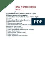 International Human Rights Basics
