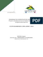 Programa de Diversificacion Horticola Cultivo de Berenjena