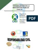 Responsabilidades Civil