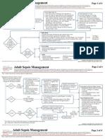 Clin Management Sepsis Management Adult Web Algorithm[1]