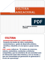 CULTURA  ORGANIZACIONAL-curso capacitaci�n.pptx