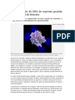 Compactação do DNA do esperma permite nova leitura de histonas