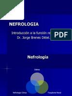 Nefrologia FISIO