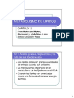 catabolismo de lipidos.pdf