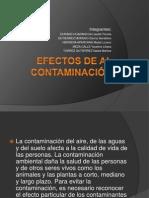 Efectos de Al Contaminacion