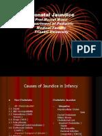 Jaundice Hepatitis
