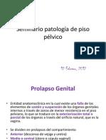 Seminario patología de piso pélvico