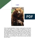 l'ours activité
