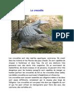Le crocodile activité