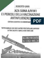 Roberto_Gava.pdf