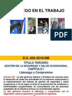 Liderazgo Segun DS 055-2010-EM