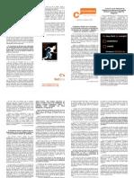 Newsletter Federación BCN C's 2009.02.02 (formato A3 para impresión)