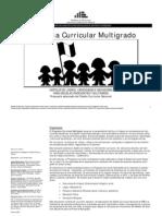 080227-Programa Curricular Multigrado