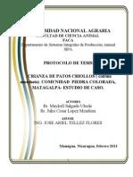 Protocolo de Tesis Maykel, 15 de Junio-11