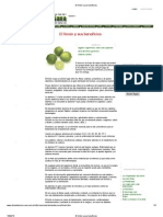El limón y sus beneficios.pdf