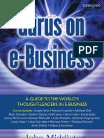 gurus on web business