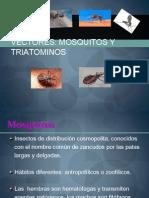 VECTORES - MOSQUITOS Y TRIATOMINOS
