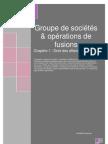 Chapitre 1 - Groupe de sociétés