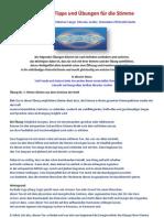 Praktische Stimm Uebungen Und Tipps