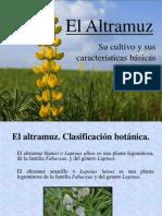El Altramuz
