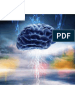 Musique et plasticité cérébrale