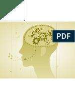 connexions entre le cerveau et les rythmes musicaux