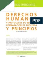 Derechos Humanos y Protocolos de Internet