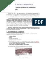 Patologia44_estructuras Afectadas Por Aluminosis