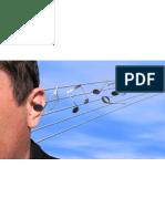 Un compositeur ou un virtuose a-t-il l'oreille absolue ?