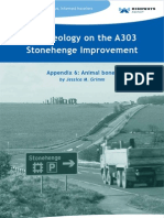 Animal bone - Archaeology on the A303 Stonehenge Improvement