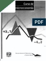 1355_anexo2 curso microeconomia