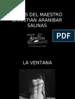 Obras Del Maestro Christian Aranibar Salinas