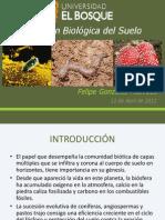 Porción Biológica del Suelo.pptx