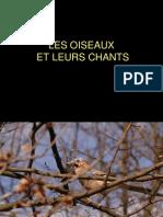 Son Magnifique Leschantsd Oiseaux