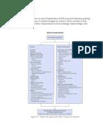 Acnes Classification