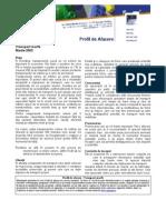 Plan Afaceri Transport_marfa
