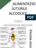 8, Curs Bauturile Alcoolice