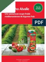 Trnd Alvalle Guide-Projet