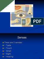 Senses[1].ppt