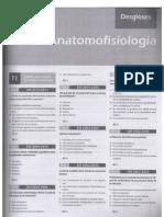 Anatomofisio