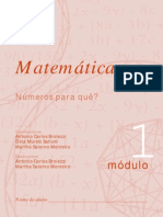 Matemática - Módulo 1 - Números Para Quê