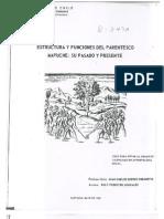 Estructura y Funciones Del Parentesco Mapuche Su Pasado y Presente