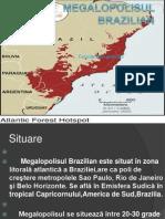 Megalopolisul Brazilian