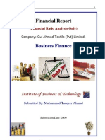 55542475 Business Finance Report Financial Ratio M Tauqeer