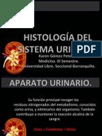aparatourinario-110520153126-phpapp01