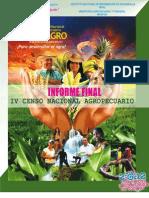 Informe Final IV Cenagro