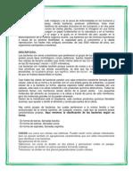ambiental microorganismo.docx