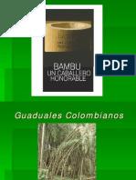 BAMBUMEX- Bambu Colombia Bamboos